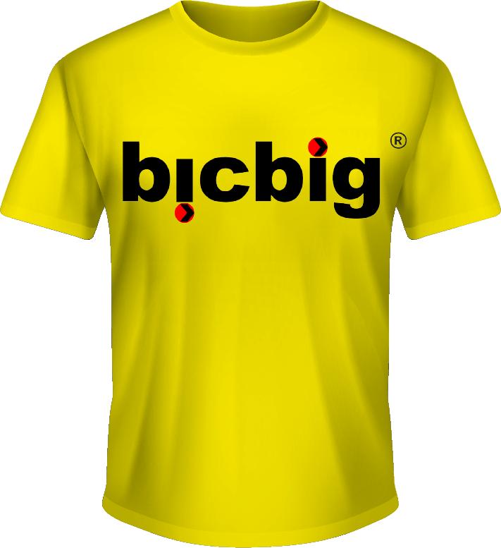 camiseta bicbig
